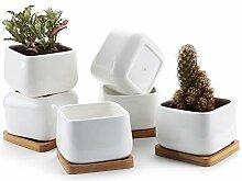 T4U Pot de Succulent en Céramique Carré avec