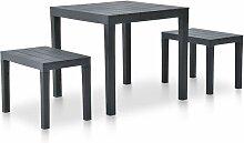 Table de jardin avec 2 bancs Plastique Anthracite