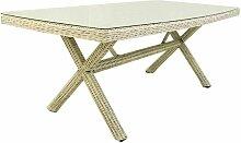 Table de Jardin rectangulaire | Taille?: 200 x 100
