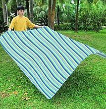 Tapis De Camping De Pique-nique En Plein Air