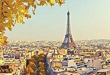 Tapisserie déco poster AUTOMNE À PARIS 3 x 2,70