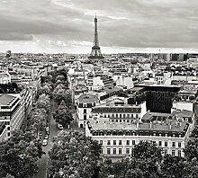Tapisserie poster panoramique PARIS PANORAMA 4 x