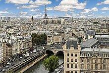 Tapisserie poster panoramique PRINTEMPS A PARIS 4