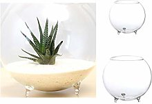 TGBN Vase en Verre Bricolage Table Fleurs Vase