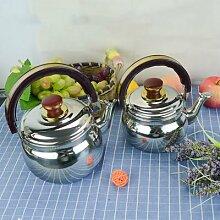 Théière de cuisine en acier inoxydable, Mini