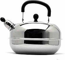 Théière théière bouilloire cuisinière à
