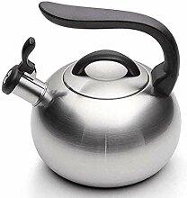 Théière Whistling en acier inoxydable bouilloire