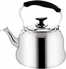 Théières en acier inoxydable Teapot CoffeeKettle