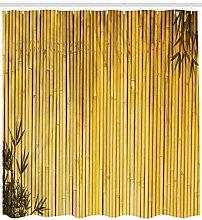 Tiges et Feuilles de Bambou Nature Image de la