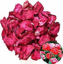 TooGet Naturel Pétales De Roses Rouges Séchées