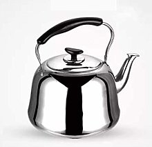 TQJ Bouilloire Induction Kettle Petit Filtre Home