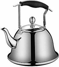 TQJ Bouilloire Induction Teapot Tea Pots for Stove
