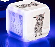 TYWFIOAV Affichage Chat Mignon Horloge/Calendrier