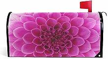 UMIRIKO 2020047 Housses magnétiques pour boîte