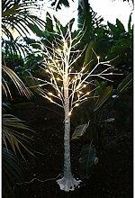 Unbekannt Arbre lumineux LED en bouleau 150 cm