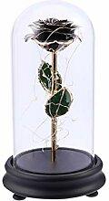 Uonlytech Rose Noir Éternelle De Métallique LED