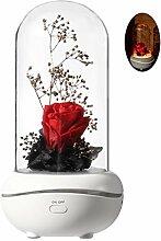 VAILANG LED Rose Aromathérapie Lampe Aroma Huile