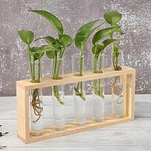Vase en verre Transparent avec cadre en bois, Art,