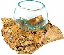 Vase racine avec verre - Petit diamètre de 8 à