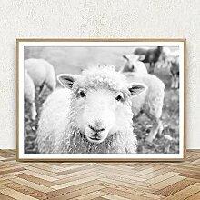 VCFHGVG Mouton Noir et Blanc Photo Imprime Ferme