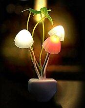 Veilleuse Nouveauté Champignon Fungus Night Light