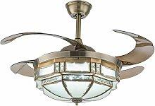 Ventilateur de plafond 42 pouces avec éclairage -