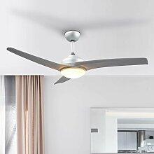 Ventilateur de plafond avec lampe