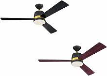 Ventilateur de plafond Tristan Noir avec éclairage