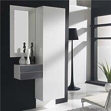 Vestiaire d'entrée moderne blanc et couleur