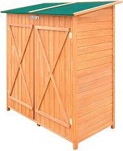 vidaXL Abri de jardin de stockage d'outils de
