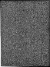Vidaxl - Paillasson lavable Anthracite 90x120 cm