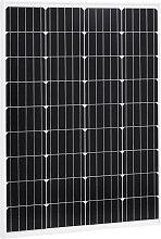 vidaXL Panneau solaire 100W Monocristallin