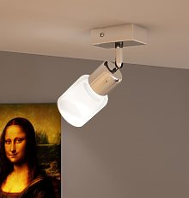 Vidaxl - Plafonnier avec une lampe incluse
