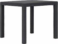 vidaXL Table de jardin Marron 79x79x72 cm