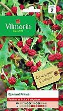 Vilmorin - Epinard fraise - légume