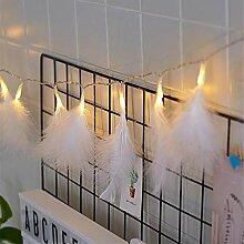 Wankd Guirlande lumineuse à 20 LED avec plumes
