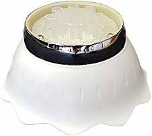 well2wellness LED projecteur Fleur pour Piscine -