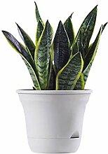 WESEEDOO Pot Plastique Plante Cache Pot Plastique