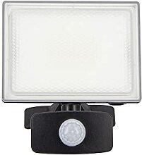 Xanlite PR20WMD Lumiere Spot eclairage Projecteur