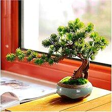 XIAOSAKU Plantes artificielles Arbre de bonsaï