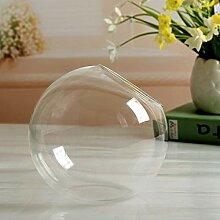 xicunxiang Fleur Plante Transparent Vase en Verre