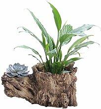 Yardwe New Simulation Racine d'arbre Plante