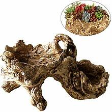 Yardwe Pots de Jardinage Vintage Pot de Fleur en