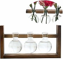 Yardwe Vase D'ampoule de Jardinière en Verre