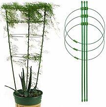 Yuehuam Treillis pour Plantes Cages de Support de
