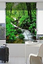 Zebra 44036Store Textile Impression numérique