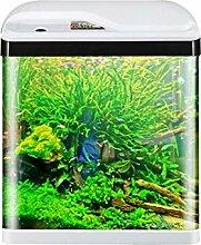 ZLFCRYP Verre Multifonctionnel LED Aquarium Trois