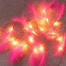 Zunbo Plumes Guirlande Lumineuse Plumes Fée